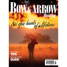 Bow & Arrow SIP 2018
