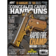 Conceal Carry Handguns fall  2015